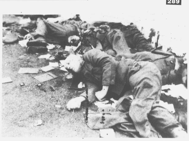 4-05-corpses