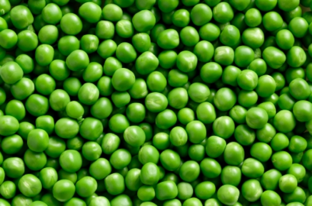 What True Equality - peas
